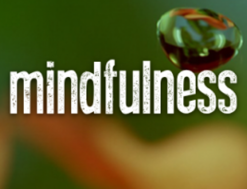 TED Talks:  Mindfulness