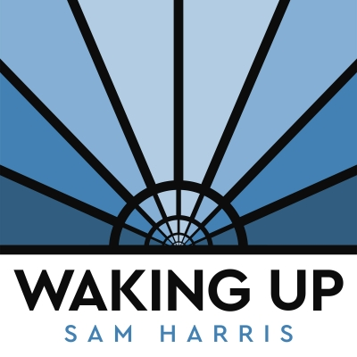 Mindfulness Sam Harris Video